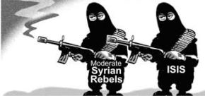"""""""There are no moderate rebels"""" – Rep. Tulsi Gabbard explains trip to Syria, meeting with Assad(Video)"""