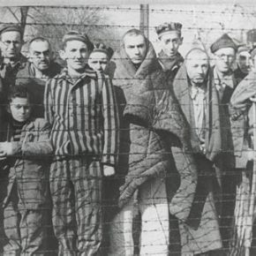 CounterPunch editor calls for covid internment camps, forced medical kidnapping of theunvaccinated